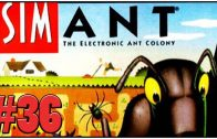 SimAnt Review – Definitive 50 SNES Game #36